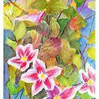 Clematis flower on the vine by Dai Wynn