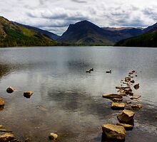 Rocks in a line at Lake Buttermere, Lake District, UK by Elana Bailey