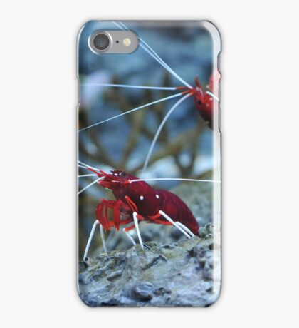What's Up Dude? iPhone Case/Skin