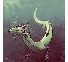 Haku. Spirited Away Photographic Print