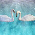 Snow Swans by Megan Noble