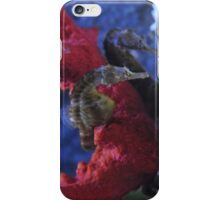 Meeting at the Coral iPhone Case/Skin