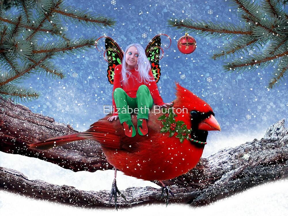 The Cardinal & The Christmas Fairy by Elizabeth Burton