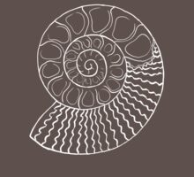 Ammonite by Boris Edery-Mordekovich
