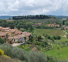 Panzano in Chianti by Helen Greenwood