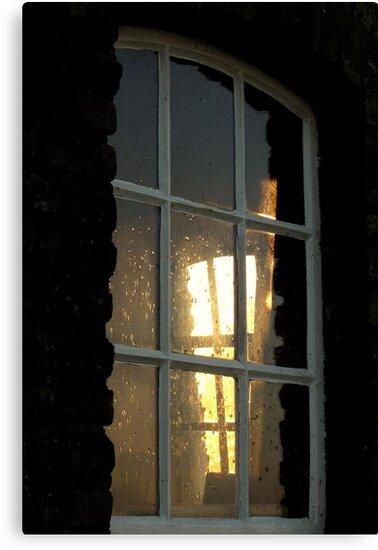Window Light by ienemien