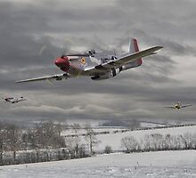 P51 Mustang - Winter Freedom by Pat Speirs