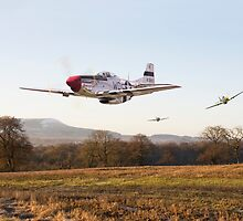 P51 Mustang - Through the Gap by Pat Speirs