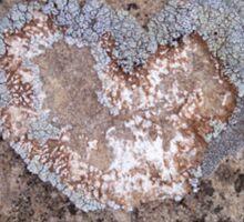 Lichen Heart Sticker