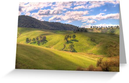 Light and Shadows - Oberon , NSW, Australia - The HDR Experience by Philip Johnson