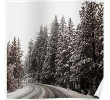 Road through Snowy Woods Poster