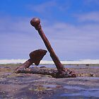 Old Boat anchor, Wreck Beach, Great Ocean road by Danny  Waters