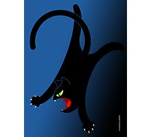 NINJA CAT 2 Photographic Print