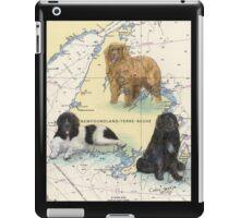 Newfoundland Dog Trio Cathy Peek Animal Art iPad Case/Skin