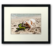 Toys at the Beach Framed Print