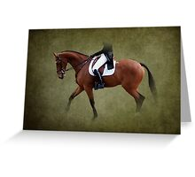 Dressage Lady Greeting Card