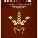House Selmy by liquidsouldes