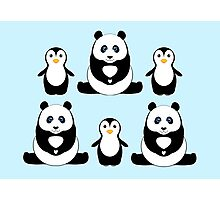 PANDAS & PENGUINS Photographic Print