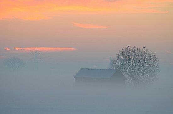 December morning by Peter Wiggerman