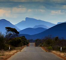 Landscape Art Stirling Ranges by Leigh Diprose