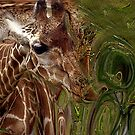 Giraffe Dreams No. 2 by Wayne King