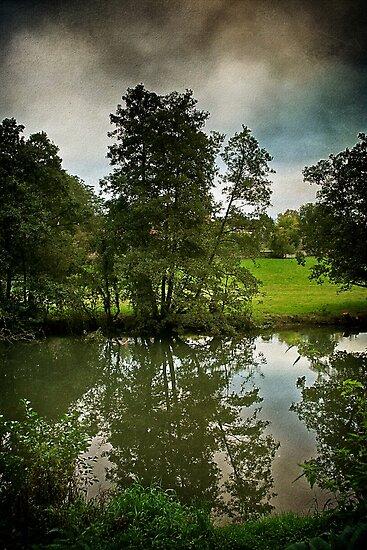 River Reflection by Simon Harris