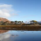 Ben Nevis from Inverscaddle Bay on Loch Linnhe. by John Cameron