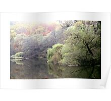 Woods in Autumn Poster