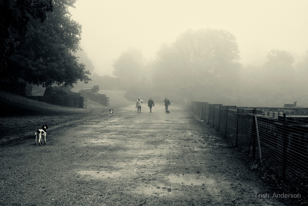 Walking the dogs by Trish  Anderson