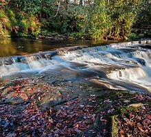 Rivelin Valley Falls II by John Dunbar