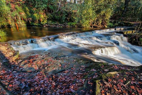Rivelin Valley Falls II by John Dunbar