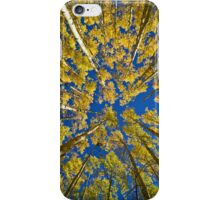 Aspen Clouds iPhone Case/Skin