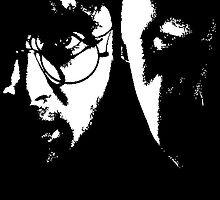 Potter vs Voldemort  by wittybanter