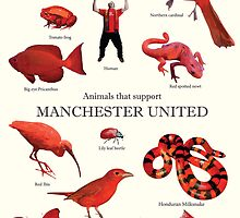 Animals that support Manchester United  by nuggetandpony
