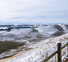 Bighill Provincial Park- Cochrane Alberta, Canada. by Barrie Daniels