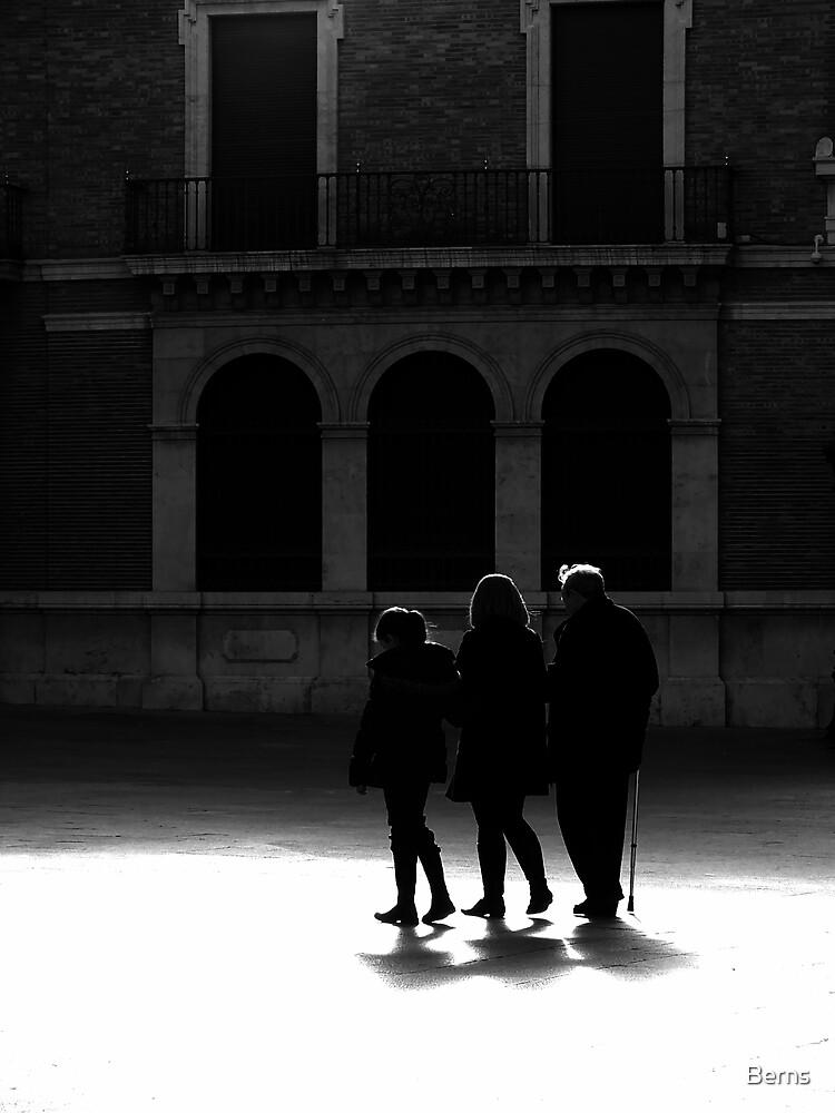 Casting Shadows .. by Berns