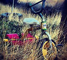 Old Bike by Lady  Dezine