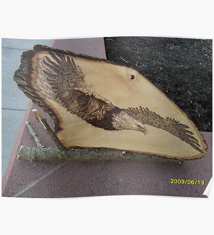 Bald Eagle in Torpedo Mode Poster