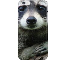 No Plans To Flee iPhone Case/Skin