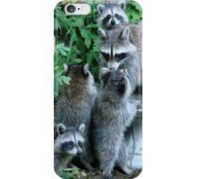 Raccoon Mom with 4 Kits iPhone Case/Skin