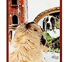 Happy Holidays St. Bernard  by susan stone