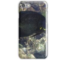 Fish in the Sea iPhone Case/Skin