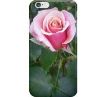 One Peach Rose iPhone Case/Skin