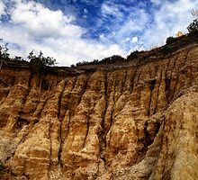 Cliff Erosion, Clifton Springs, Victoria by caru