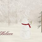 Believe In Christmas by Maria Dryfhout