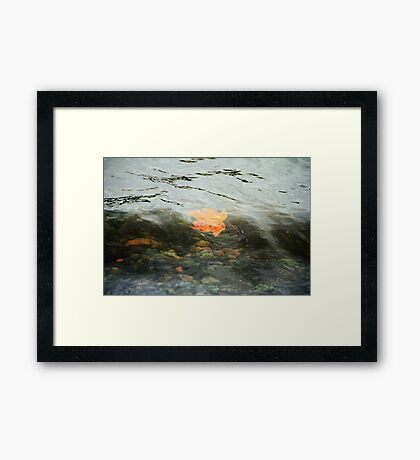 Surfin' the Gnarly Curls Dude Framed Print