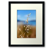 Pod by the Lake Framed Print