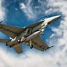 Super Hornet F/A-18F - Landing by Michael Howard
