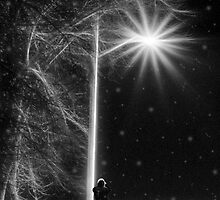 The Street Light by Keri Harrish
