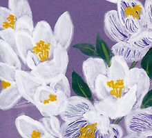 Delightful Crocus from Amphai by Baina Masquelier